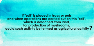 """If """"soil"""" is placed in trays or pots"""
