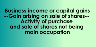 Business income or capital gains